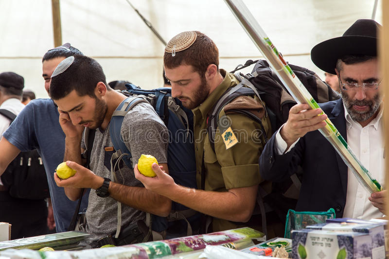 Νεαροί άνδρες - οι Εβραίοι επιλέγουν etrog σε έναν μετρητή στοκ φωτογραφία με δικαίωμα ελεύθερης χρήσης