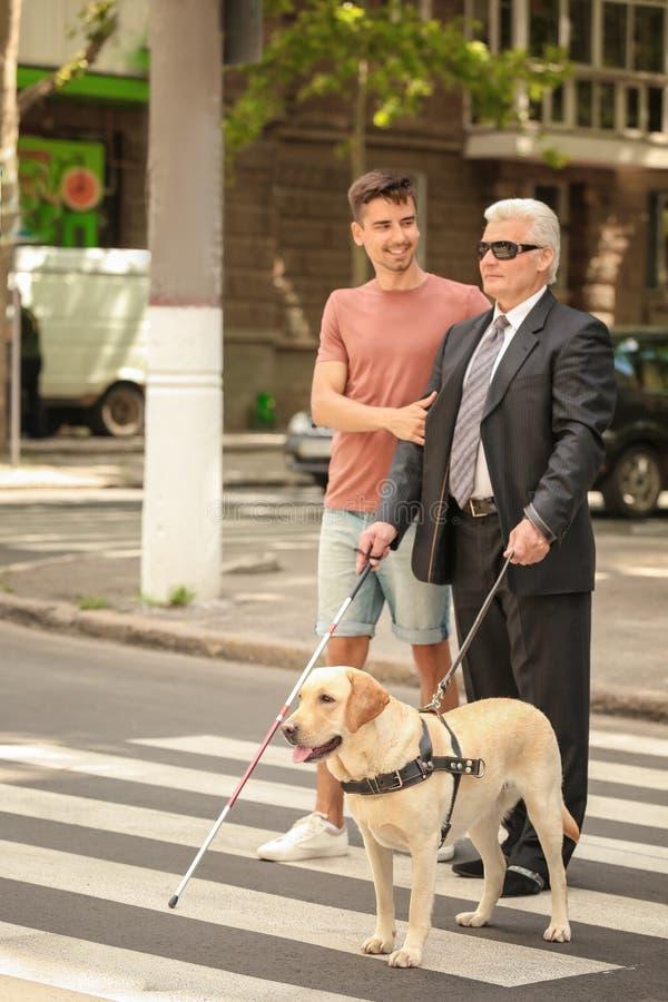 Νεαρός άνδρας που βοηθά το τυφλό άτομο με το σκυλί οδηγών στοκ φωτογραφίες