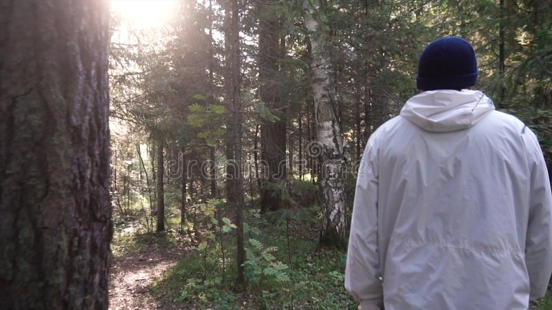 Νεαρός άνδρας στο ταξίδι στρατοπέδευσης Έννοια της ελευθερίας και της φύσης Άποψη του ατόμου από το πίσω περπάτημα στα ξύλα κατά  στοκ φωτογραφία με δικαίωμα ελεύθερης χρήσης
