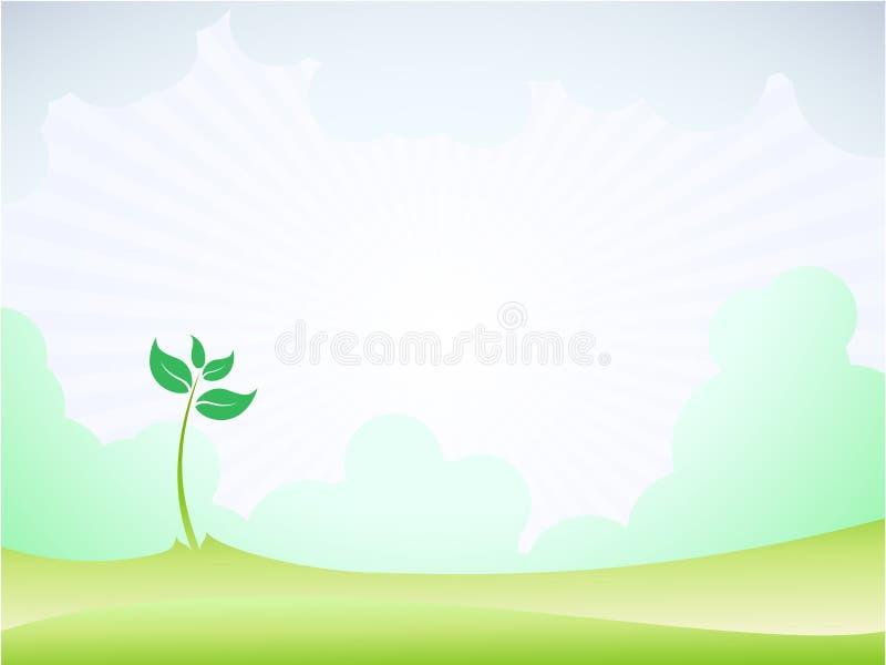 νεαρός βλαστός άνοιξη βλα& διανυσματική απεικόνιση