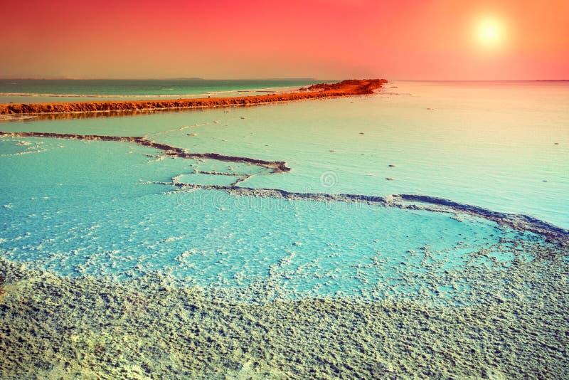 Νεκρή αλατισμένη ακτή θάλασσας στοκ εικόνες