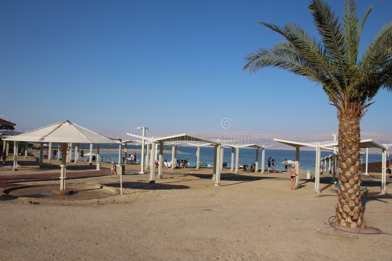 Νεκρή θάλασσα στο Ισραήλ - Ein Bokek στοκ φωτογραφίες με δικαίωμα ελεύθερης χρήσης