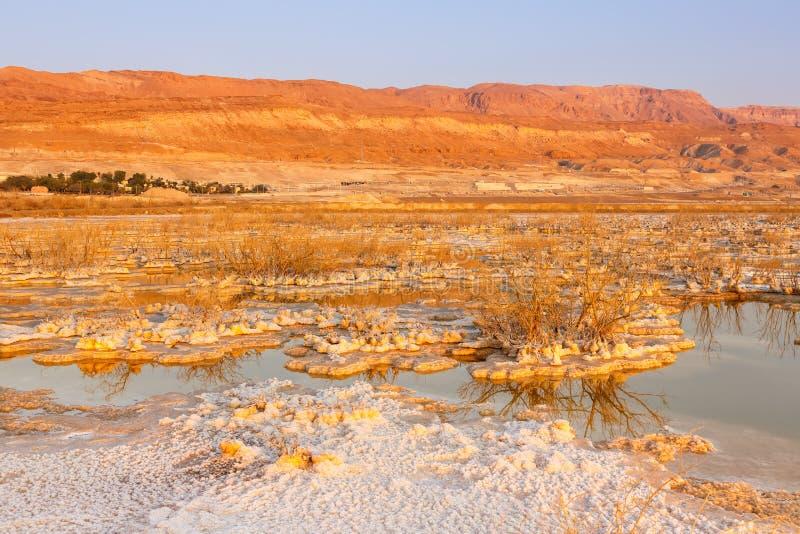 Νεκρή φύση τοπίων πρωινού ανατολής του Ισραήλ θάλασσας στοκ φωτογραφία με δικαίωμα ελεύθερης χρήσης