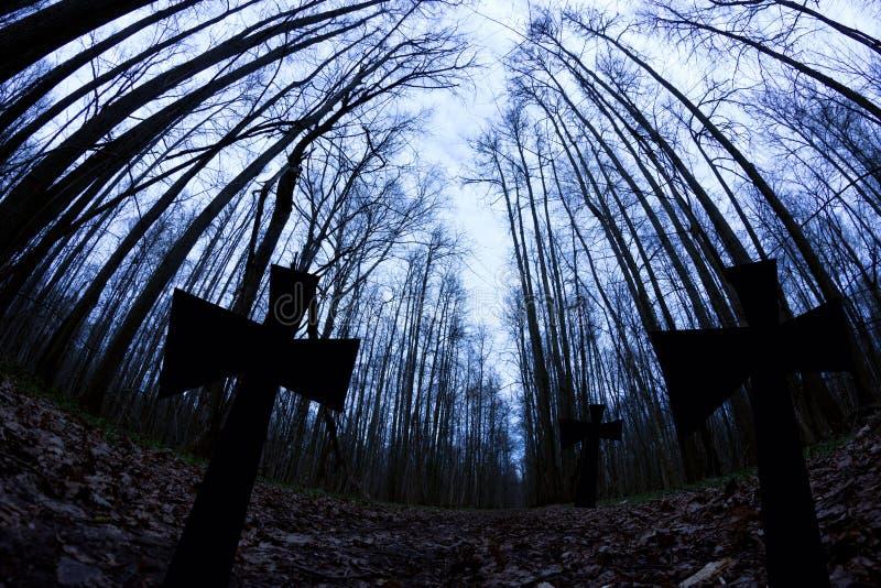 νεκροταφείο στη σκοτεινή δασική έννοια αποκριών στοκ εικόνες με δικαίωμα ελεύθερης χρήσης