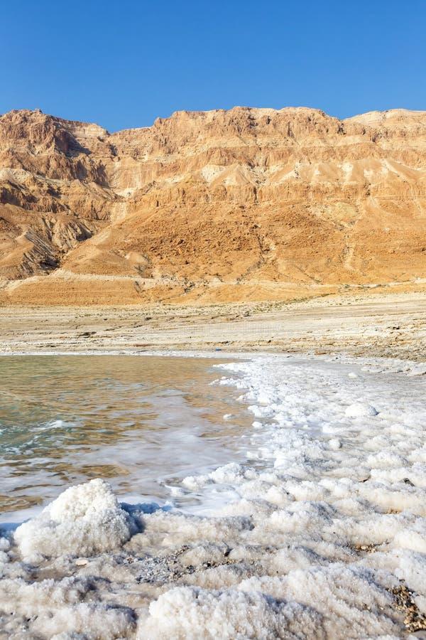 Νεκρό σχήμα πορτρέτου φύσης τοπίων του Ισραήλ θάλασσας στοκ εικόνα