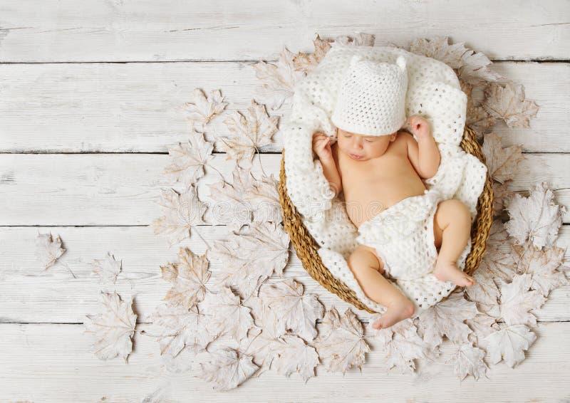 Νεογέννητος ύπνος μωρών στο καλάθι στα φύλλα πέρα από το λευκό στοκ φωτογραφία