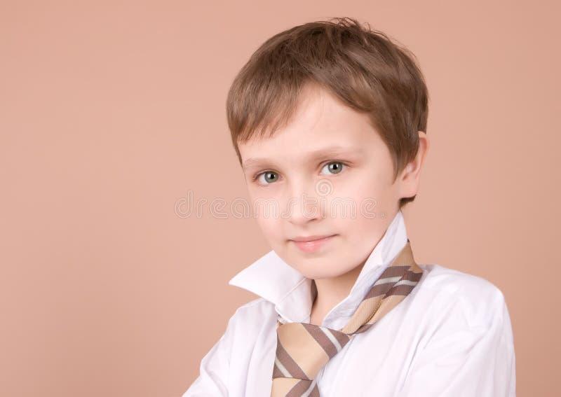 Download νεολαίες πορτρέτου επιχειρηματιών Στοκ Εικόνες - εικόνα από δυνατότητα, αρσενικά: 2227476