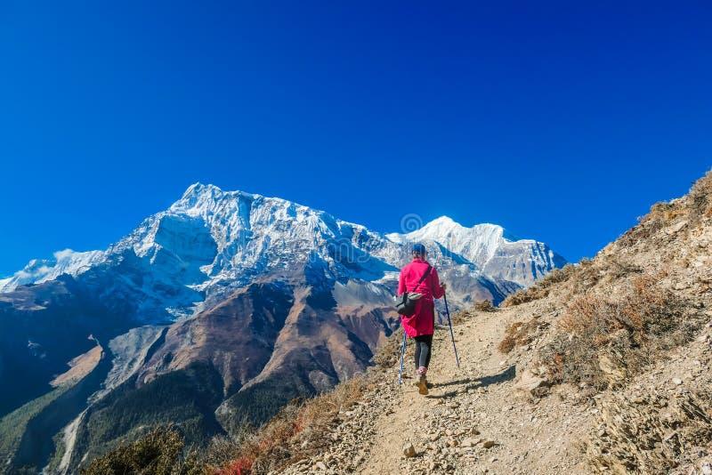 Νεπάλ - κορίτσι οδοιπορίας στον τρόπο στη λίμνη πάγου στοκ εικόνες