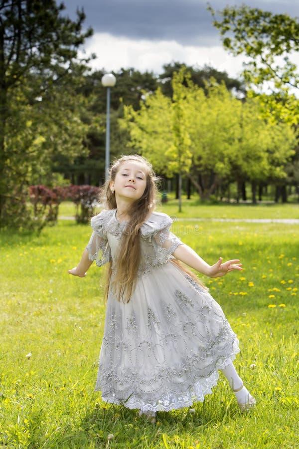 Νεράιδα έτοιμη να πετάξει πίσω στη χώρα των θαυμάτων στοκ εικόνες με δικαίωμα ελεύθερης χρήσης