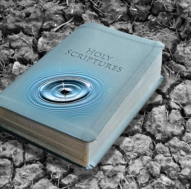 Νερά Βίβλων της αλήθειας στοκ φωτογραφία με δικαίωμα ελεύθερης χρήσης