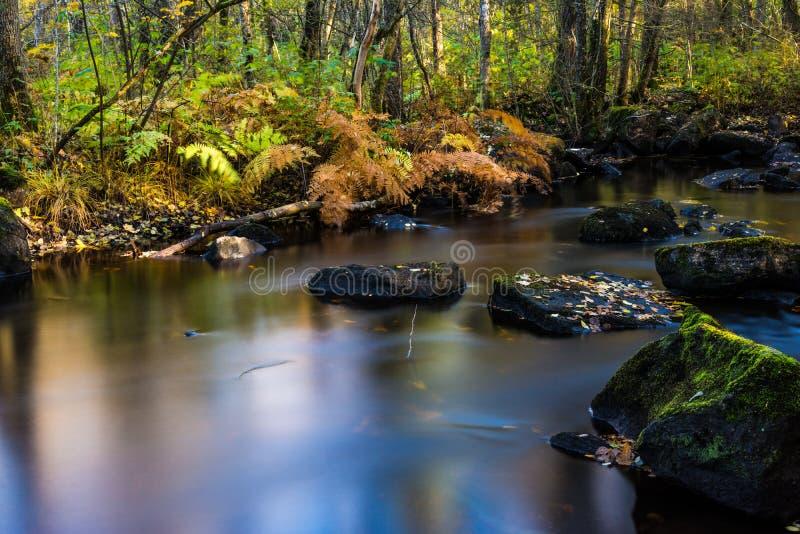 Νερό και πέτρα στοκ εικόνες