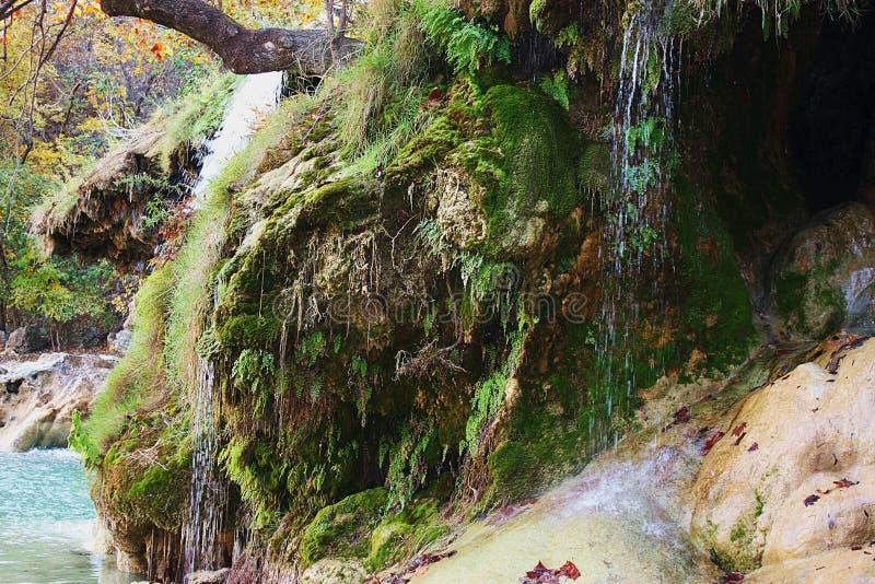 Νερό που πέφτει απότομα πέρα από καλυμμένους τους βρύο βράχους στοκ εικόνες