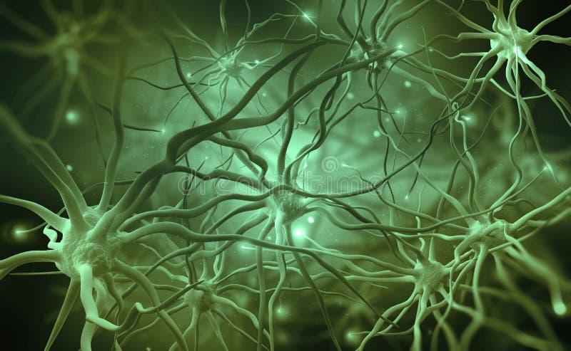 Νευρικά δίκτυα του ανθρώπινου εγκεφάλου τρισδιάστατη απεικόνιση των αφηρημένων κέντρων νεύρων απεικόνιση αποθεμάτων