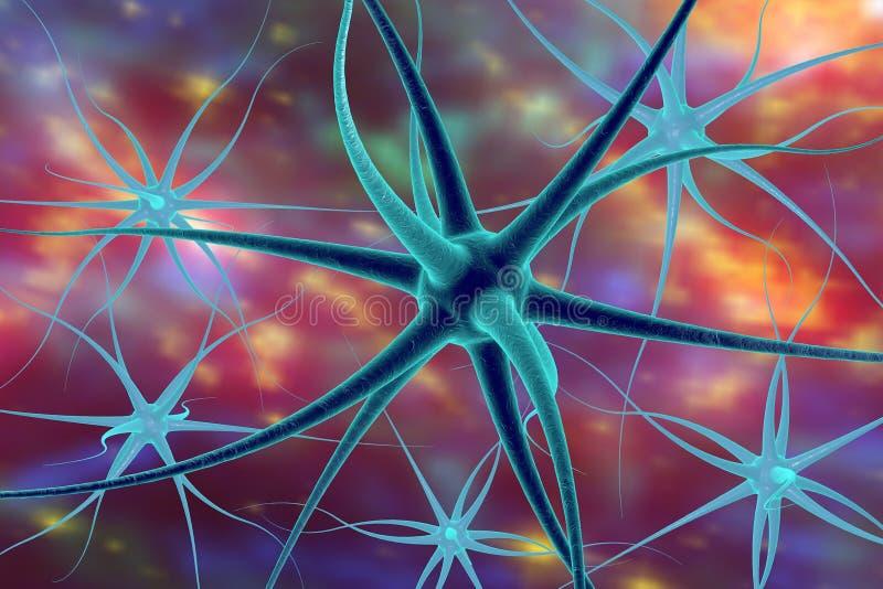Νευρώνας, κύτταρο εγκεφάλου διανυσματική απεικόνιση