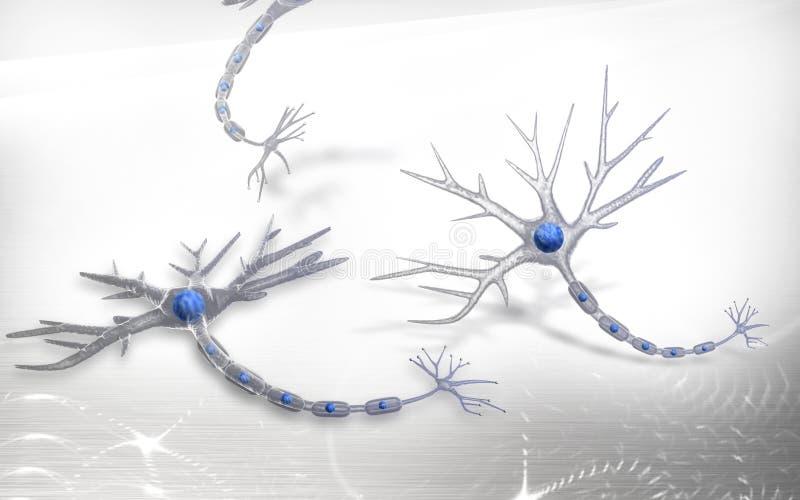Νευρώνας ελεύθερη απεικόνιση δικαιώματος