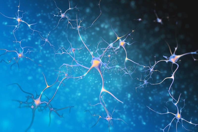 Νευρώνες των κυττάρων νευρικών συστημάτων ελεύθερη απεικόνιση δικαιώματος