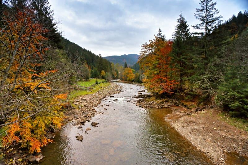 Νεφελώδες βροχερό τοπίο πτώσης Φωτεινά χρώματα φθινοπώρου ξύλων στο ρ στοκ εικόνες