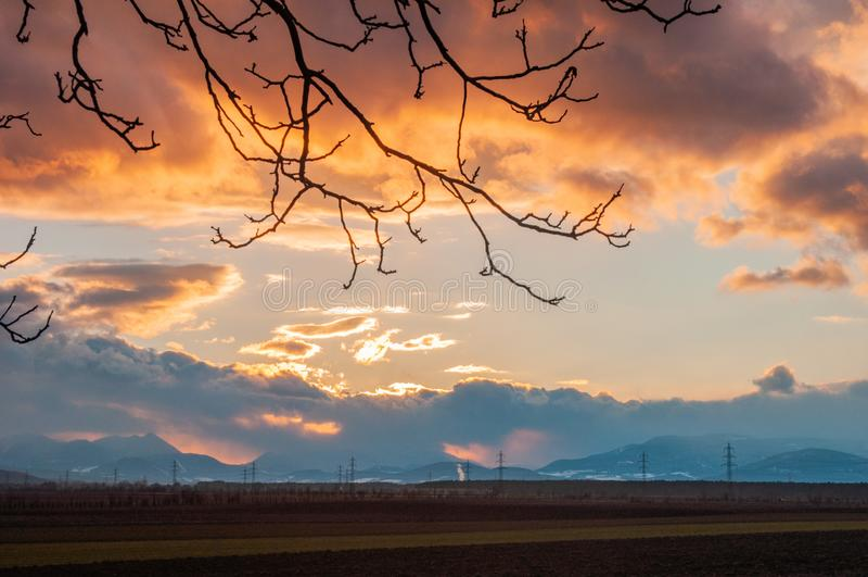 Νεφελώδες ηλιοβασίλεμα με τη σκιαγραφία από έναν πορτοκαλή ουρανό δέντρων στοκ εικόνα