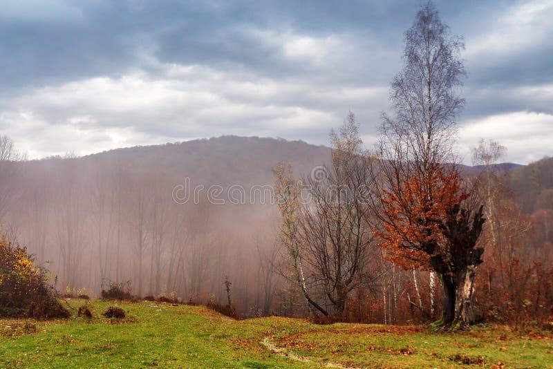 Νεφελώδες τοπίο φθινοπώρου βουνών με το ζωηρόχρωμο δάσος στοκ φωτογραφίες