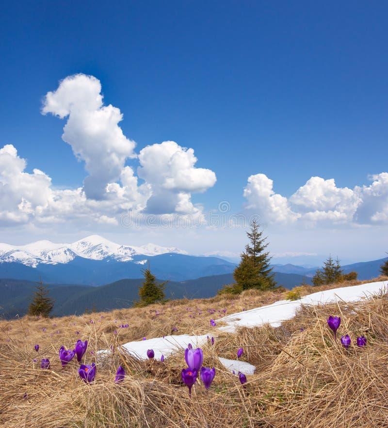 νεφελώδης άνοιξη ουρανο στοκ φωτογραφίες με δικαίωμα ελεύθερης χρήσης