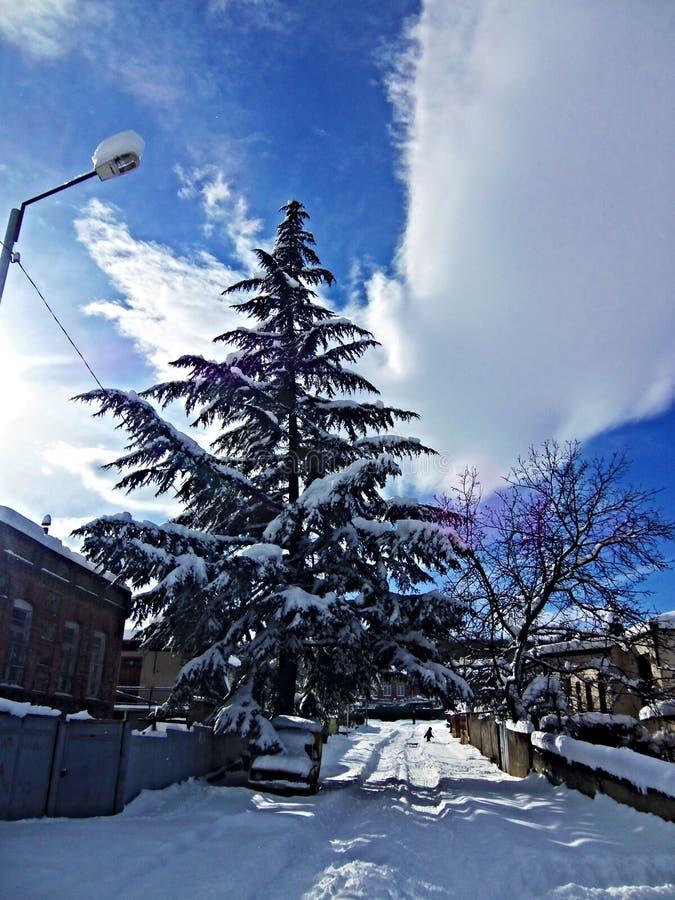 νεφελώδης ουρανός Ανατολή ευχάριστη όψη χιόνι Χειμώνας στοκ φωτογραφίες