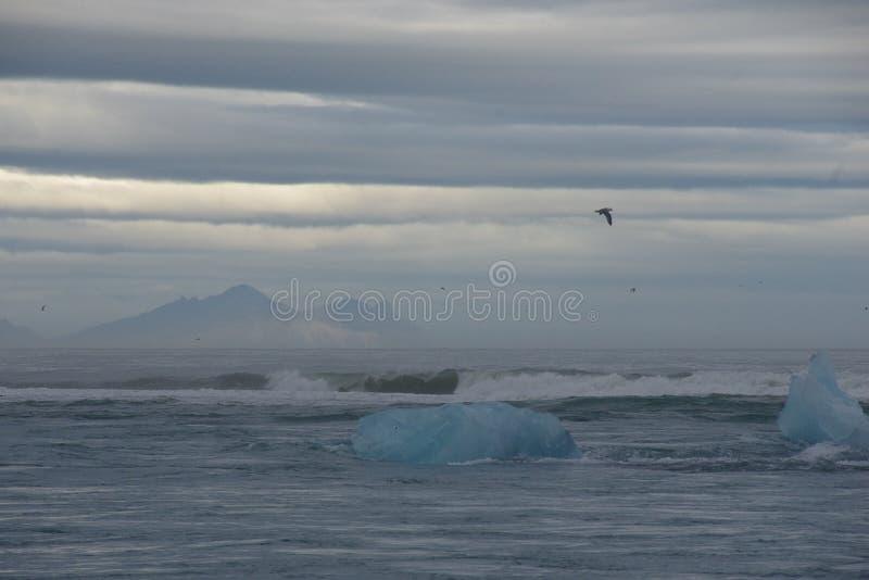 Νεφελώδης παγετώνας παγόβουνων της Ισλανδίας Jokulsarlon στοκ εικόνες