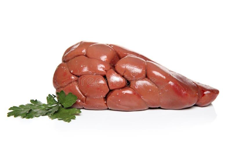 Νεφρό βόειου κρέατος με τα χορτάρια στοκ φωτογραφία με δικαίωμα ελεύθερης χρήσης