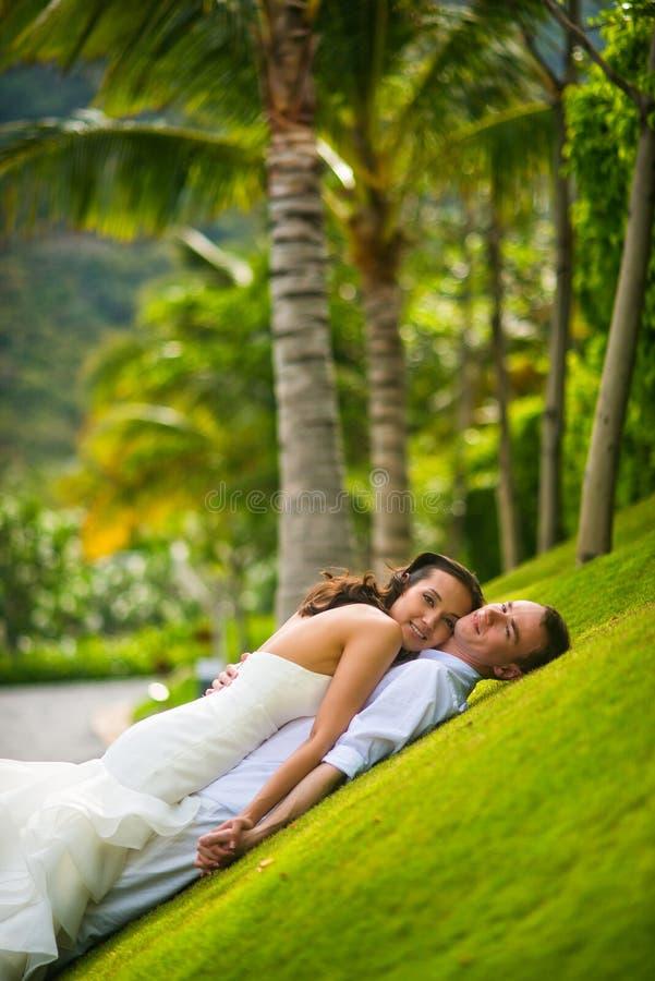 Νεόνυμφος και νύφη που αγκαλιάζουν σε μια πράσινη χλόη σε ένα υπόβαθρο των φοινίκων στοκ φωτογραφίες με δικαίωμα ελεύθερης χρήσης