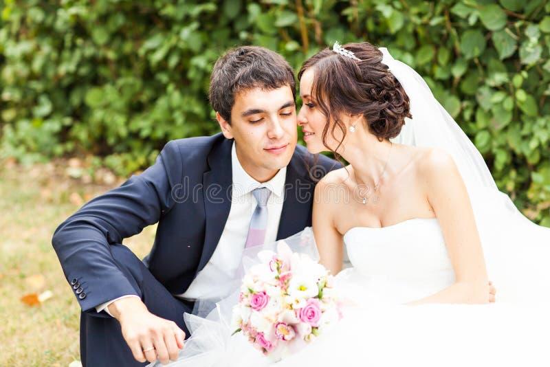 Νεόνυμφος και νύφη σε ένα πάρκο γάμος κατάταξης τεμαχίων φορεμάτων _ στοκ εικόνες με δικαίωμα ελεύθερης χρήσης