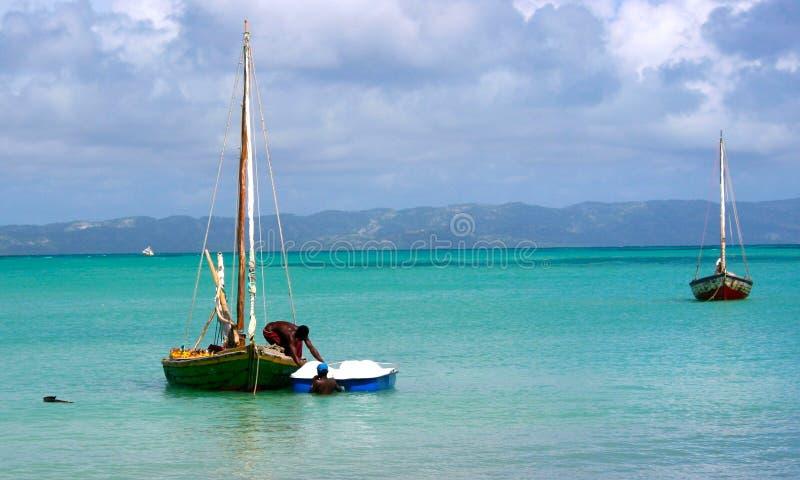 Νησί αγελάδων, Αϊτή στοκ φωτογραφία με δικαίωμα ελεύθερης χρήσης