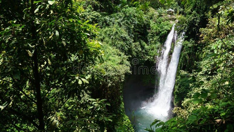 Νησί Ινδονησία του Μπαλί καταρρακτών στοκ εικόνες