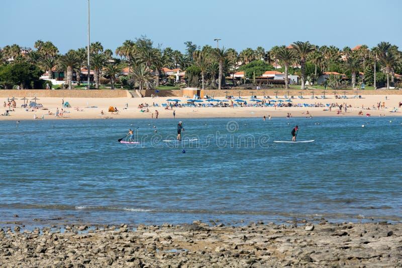 νησί Ισπανία παραλιών caleta canary de fuerteventura fuste στοκ εικόνα με δικαίωμα ελεύθερης χρήσης