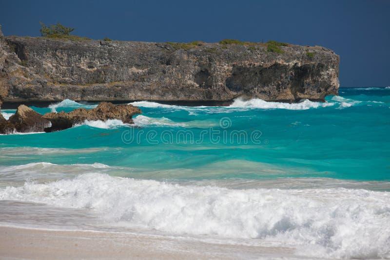 Νησί Καραϊβικής των Μπαρμπάντος, τροπικός παράδεισος με το hangi φοινικών στοκ εικόνες με δικαίωμα ελεύθερης χρήσης
