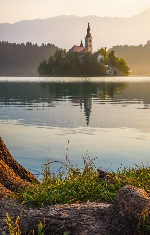 Νησί με την εκκλησία στην αιμορραγημένη λίμνη, Σλοβενία στην ανατολή στοκ φωτογραφία με δικαίωμα ελεύθερης χρήσης
