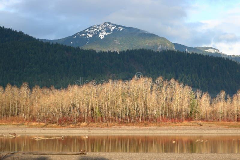 Νησί ποταμών στην κοιλάδα Fraser του Καναδά στοκ φωτογραφίες με δικαίωμα ελεύθερης χρήσης