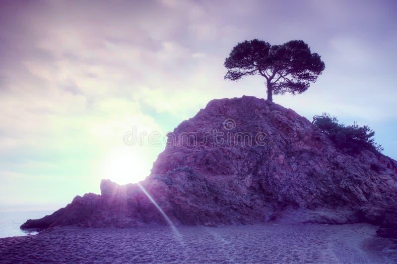 Νησί στην ανατολή στοκ φωτογραφία με δικαίωμα ελεύθερης χρήσης