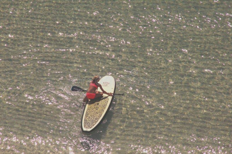 Νησί της Shell, Κόλπος οικότροφων κουπιών της Φλώριδας του Μεξικού στοκ φωτογραφίες