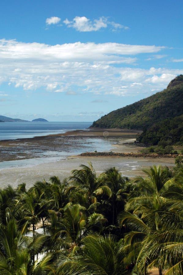 νησί του Χάμιλτον στοκ εικόνες με δικαίωμα ελεύθερης χρήσης