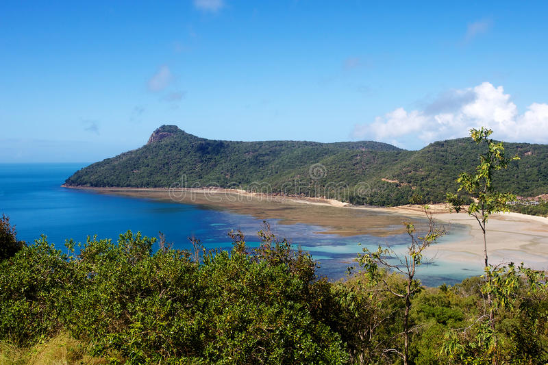 Νησί του Χάμιλτον παραλιών Catseye στοκ φωτογραφίες με δικαίωμα ελεύθερης χρήσης
