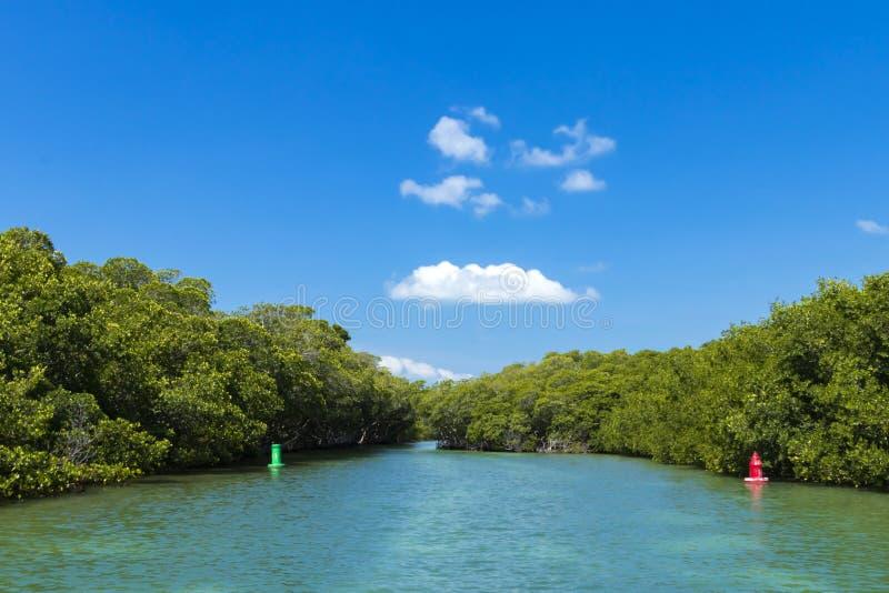 Νησί των Florida Keys στοκ φωτογραφίες