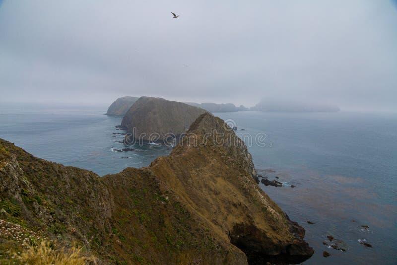 Νησί Anacapa στοκ φωτογραφία με δικαίωμα ελεύθερης χρήσης