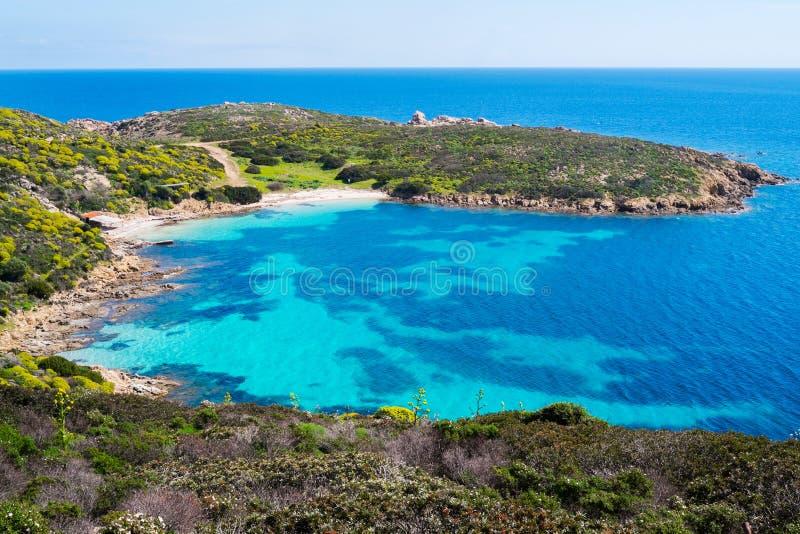 Νησί Asinara στη Σαρδηνία, Ιταλία στοκ εικόνες