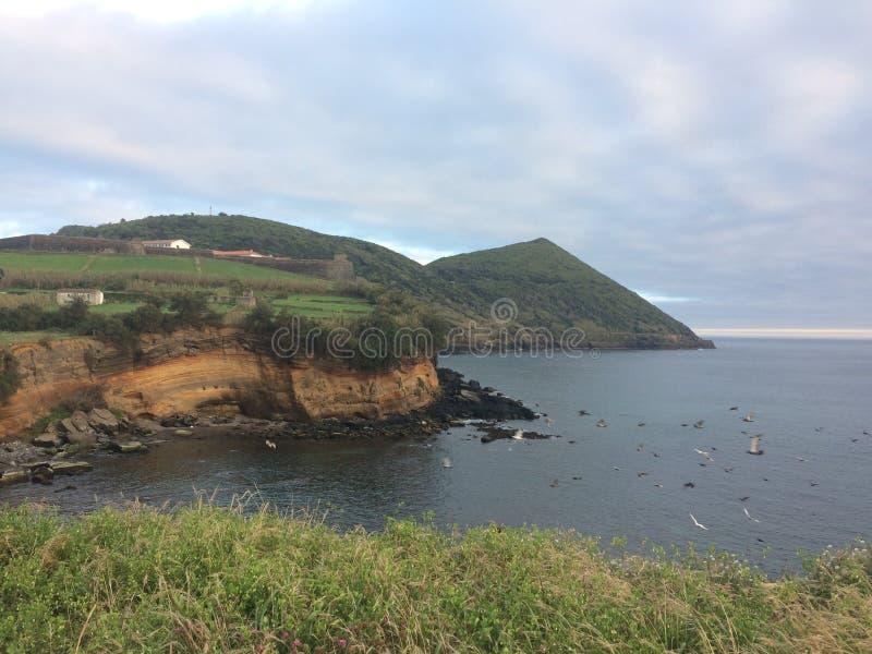 Νησί Terceira στοκ εικόνες με δικαίωμα ελεύθερης χρήσης