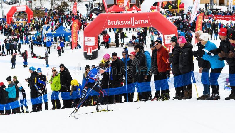 Νικητές Ebba Andersson, Solleftea που κάνουν σκι ΕΑΝ, στο τέρμα στη τοπ φυλή βουνών Fjalltoppsloppet φυλών σκι 35 χλμ σε Bruksval στοκ εικόνα