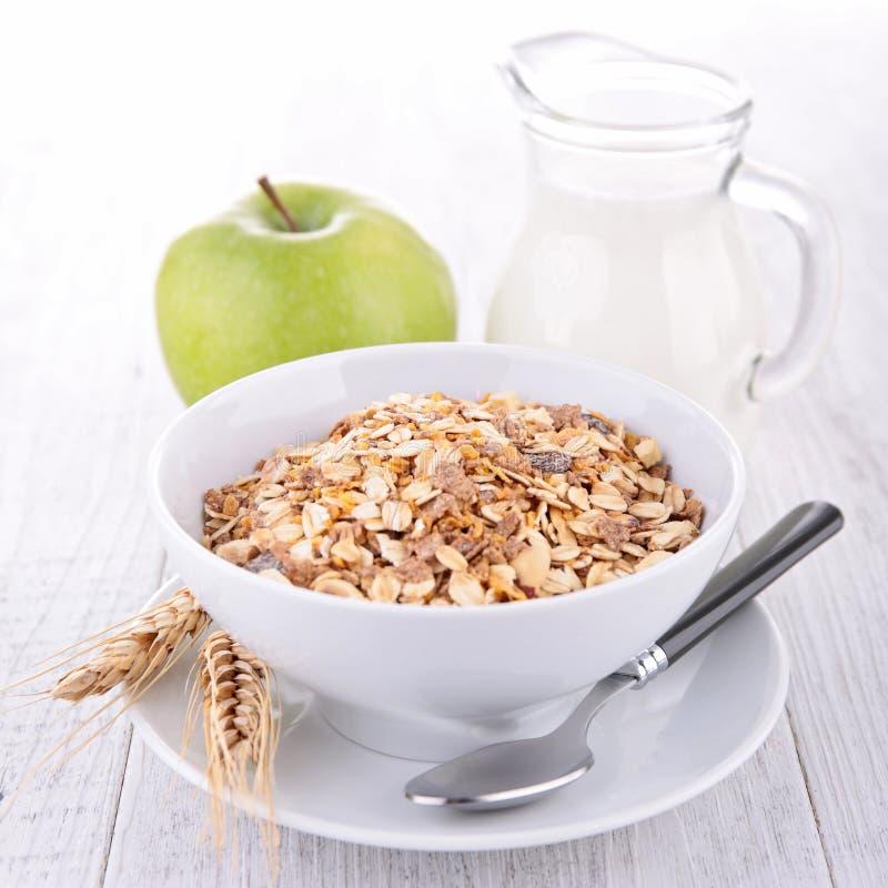 Νιφάδες, μήλο και γάλα βρωμών στοκ φωτογραφία με δικαίωμα ελεύθερης χρήσης