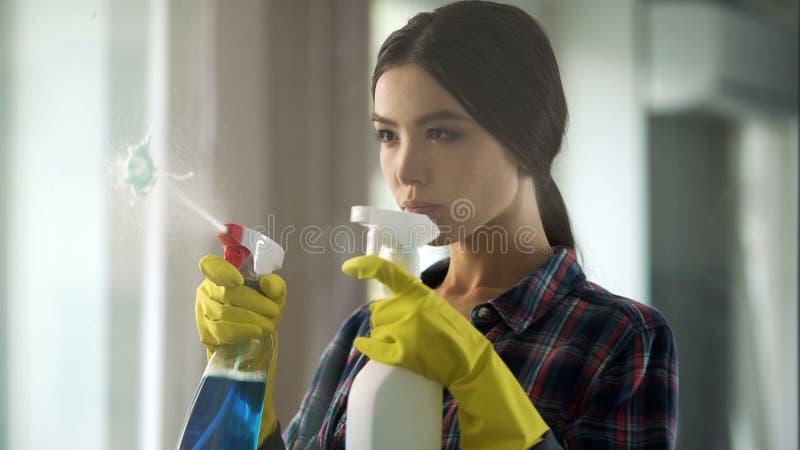 Νοικοκυρά που ψεκάζει τους διαφορετικούς καθαριστές παραθύρων στο γυαλί, που φέρνει το σπίτι στη διαταγή στοκ φωτογραφία