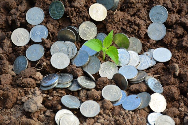 Νομίσματα σωρών χρηματοδότησης γύρω από τις πράσινες εγκαταστάσεις στο υπόβαθρο χώματος και φύσης στοκ φωτογραφία με δικαίωμα ελεύθερης χρήσης