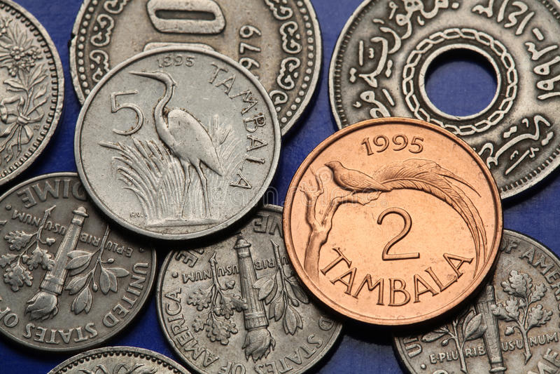 Νομίσματα του Μαλάουι στοκ εικόνες