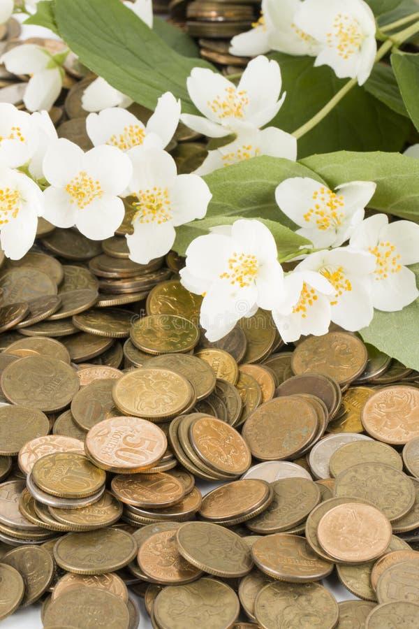 νομισματικό αντικείμενο πέρα από το λευκό δέντρων στοκ εικόνες
