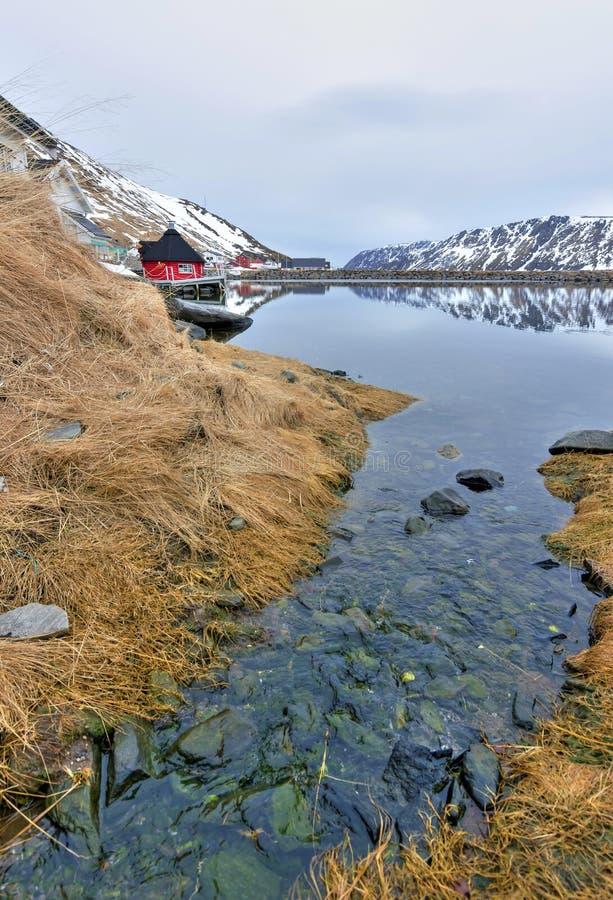 Νορβηγικό πρώιμο ελατήριο στοκ εικόνες